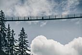 Hiker on the suspension bridge at Holzgau, E5, Alpenüberquerung, 2nd stage, Lechtal, Kemptner Hütte  to Memminger Hütte, tyrol, austria, Alps