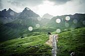rain showers in the mountains, E5, Alpenüberquerung, 1st stage Oberstdorf Sperrbachtobel to Kemptnerhütte, Allgäu, Bavaria, Alps, Germany