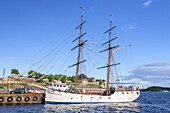 Sailing ship in the Oslofjord, Oslo, Østlandet, Eastern norway, Norway, Scandinavia, Northern Europe, Europe