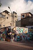 Street Art at capital Bogota, Departmento Cundinamarca, Colombia, Southamerica