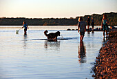 Children, a dog and a couples, have fun at the Chiemsee beach at Chieming shortly before sunset