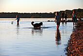 Kinder, ein Hund und ein Pärchen haben Spaß am Chiemsee-Strand bei Chieming kurz vor Sonnenuntergang