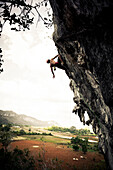 Rock Climbing in the Valle de Vinales, UNESCO National Park,  Pinar del Rio, Cuba, Caribbean, Latin America, America