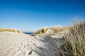 Trail to the beach through dunes in winter, East Frisian Islands, Spiekeroog, Lower Saxony, North Sea, Germany