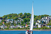 Sailboat on the Elbe, Süllberg, Blankenese, Hamburg, Germany