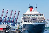 Cruise ship, Port, Hamburg, Germany