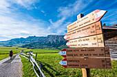 Wanderin und Wegweiser vor dem Schlern Gebirge, Compatsch, Seiser Alm, Südtirol, Italien