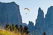 Gleitschirmflieger vor dem Schlern Gebirge, Compatsch, Seiser Alm, Südtirol, Italien