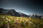 woman on a bench on Plumsjoch,  Plumsjoch, Karwendel mountains, Tyrol, Austria