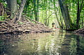 Kayaking tour through the narrow rivers of the Feldberger Seenlandschaft