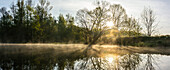 Morning mist over the rivers of the Spreewald during sunrise