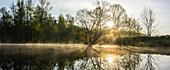 Morgennebel über den Flüssen des Spreewaldes während des Sonnenaufganges