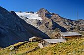 Schneebiger Nock above alpine hut Ursprungsalm, valley of Reinbachtal, Rieserferner Group, South Tyrol, Italy
