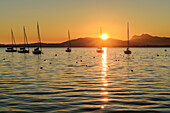 Sailing boats at lake Chiemsee at sunrise, Chiemgau alps in background, lake Chiemsee, Chiemgau, Upper Bavaria, Bavaria, Germany