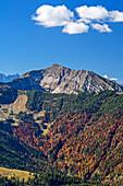 Schafreiter mit herbstlich verfärbtem Wald, vom Demeljoch, Karwendel, Oberbayern, Bayern, Deutschland