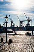 Morning light, harbour, St. Pauli, Altona, Hamburg, Germany
