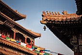 detail of roof art at Yonghe Temple (aka Lama Temple), Beijing, China, Asia