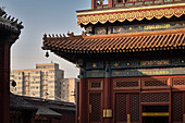 detail of roof art at Yonghe Temple (aka Lama Temple) with view at surrounding residential towers, Beijing, China, Asia