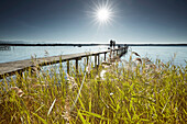 Jetty and Lakeshore Lake Starnberg, bSt Heinrich, lake starnberg, bavaria, germany