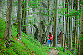 Woman hiking on Lechweg through forest of beech trees, lake Alpsee, Lechweg, Ammergau Alps, Swabia, Bavaria, Germany