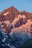 Pic Gaspard im Alpenglühen, Ecrins, Nationalpark Ecrins, Dauphine, Dauphiné, Hautes Alpes, Frankreich