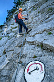 Mrs rises on a via ferrata via key agency bettelwurf, Absamer via ferrata, bettelwurf, Karwendel, Tyrol, Austria
