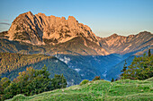Wilder Kaiser im Morgenrot, von Hinterberg, Wilder Kaiser, Kaisergebirge, Tirol, Österreich