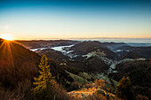 View from the Belchen south on the Wiesental valley and the Swiss Alps, morning atmosphere with fog, Belchen, Black Forest, Baden-Württemberg, Germany