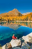 Hiker take a break to admire lake Saoseo in a perfect autumn day, Poschiavo, val di Campo, Canton of Graubunden, Switzerland, Europe.