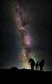 Aurora Borealis with Horses, Iceland.