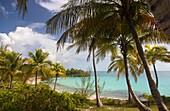Oleander Gardens public beach, Eleuthera island, Bahamas..