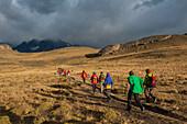 Besucher wandern im frühen Morgenlicht über die sanften Hügel, Nationalpark Torres del Paine, Magallanes y de la Antartica Chilena, Patagonien, Chile, Südamerika