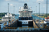 Cruise ship Celebrity Infinity (Celebrity Cruises) leaves the Gatun Locks on the eastern end of the Panama Canal, entering the Gulf of Mexico, Cristobal, Panama, Central America