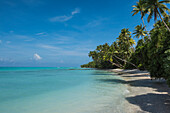 Shoreline view of a paradise-like island covered with palm trees, Bock Island, Ujae Atoll, Marshall Islands, South Pacific