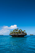 A tiny mushroom-shaped island covered with palm trees and bushes stands in turquoise waters, Fulaga Island, Lau Group, Fiji, South Pacific