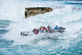 Passengers of an expedition cruise ship get a boat-full of water in their Zodiac dinghy raft as waves crash around them, Atiu, Cook Islands, South Pacific