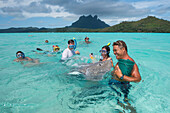 Tourists swim with and feed the stingrays (suborder Myliobatoidei, order Myliobatiformes) during a boat excursion in the lagoon, Bora Bora, Society Islands, French Polynesia, South Pacific