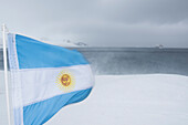The flag of Argentina blows hectically in heavy blizzard winds at Base Orcadas, while the expedition cruise ship MS Bremen (Hapag-Lloyd Cruises) lies at anchor in the distance, Laurie Island, South Orkney Islands, Antarctica