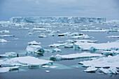 A large tabular iceberg is surrounded by smaller bits of sea ice, near Laurie Island, South Orkney Islands, Antarctica