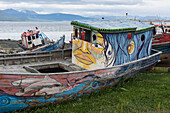 Creatively painted beached boats lie on the shore near the port, Puerto Williams, Magallanes y de la Antartica Chilena, Patagonia, Chile