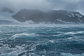 High winds, rough seas and a southern giant petrel (Macronectes giganteus) in flight (far right) create an eerie atmosphere, Antarctic Sound, Antarctica