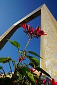 Dubai Frame, Pflanzen, Blumen, Zaabel Park, Dubai, VAE, Vereinigte Arabische Emirate