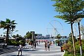 Ain Dubai, Riesenrad, 260 Meter Höhe, Eröffnung 2019, Strand, The Beach, Dubai Marina, Dubai, VAE, Vereinigte Arabische Emirate