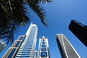 Palm, Architecture, Skyscraper, Dubai Marina, Dubai, UAE, United Arab Emirates