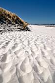 beach, sand dune, Wangerooge, East Frisian Islands, Friesland - district, Lower Saxony, Germany, Europe