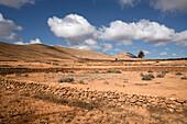 volcanic landscape, La Oliva, Fuerteventura, Spain, Europe