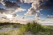 Sanddüne, Strandhafer, Himmel, Sonnenlicht, Schillig, Wangerland, Landkreis Friesland, Niedersachsen, Deutschland, Europa