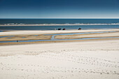 beach, horses, equestrians, North Sea, Wangerooge, East Frisian Islands, Friesland - district, Lower Saxony, Germany, Europe