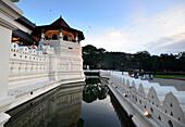 am Zahntempel, Kandy im Bergland, Sri Lanka
