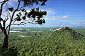 auf der Palastanlage auf dem Sigiriya-Felsen, Sigiriya, Sri Lanka